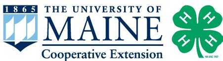 umaine extension offering a 4 h sitter course