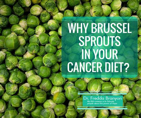 can dogs eat brussel sprouts why brussel sprouts in your cancer diet dr fredda branyon