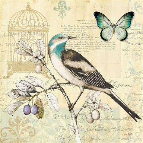 Imagenes Vintage Animales | mariposas vintage buscar con google naturaleza vintage