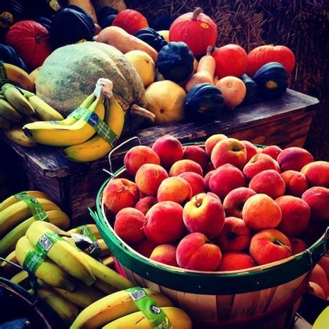 vegetables with potassium 5 fruits and vegetables high in potassium plus 1 secret