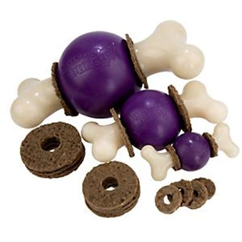 busy toys for dogs busy buddy bouncy bone