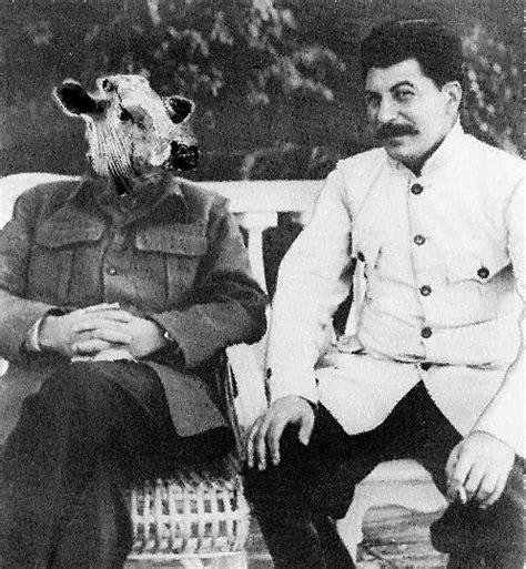 Beria Size S file stalin cow jpg