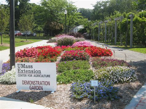 Amherst Garden Center umass amherst our not so secret gardens center for