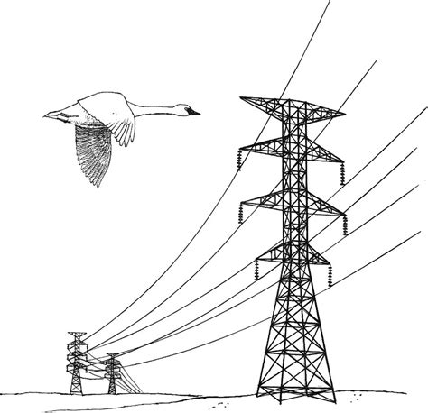 file power lines hazard illustration jpg wikimedia commons