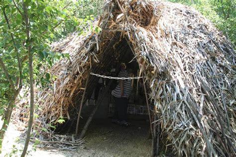 une hutte hutte feuillardiere flint s