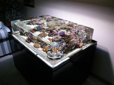 Table Aquarium by Aquarium Table 1funny