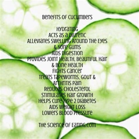 are cucumbers bad for dogs benefits of cucumbers
