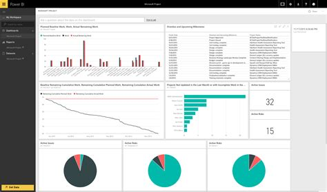 Microsoft Project Dashboard Templates by Project And Projectserver Reporting