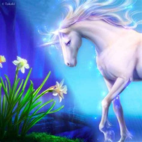imagenes de unicornios y caballos unicornios y pegasos caballos alados p 225 gina 1