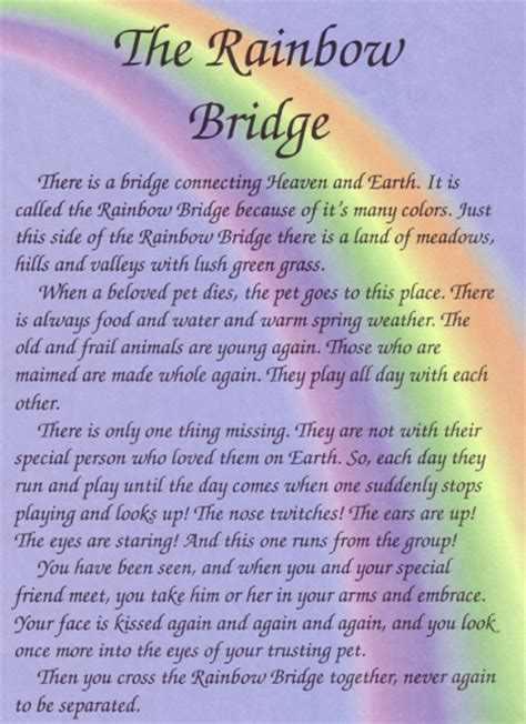 rainbow bridge poem for dogs rainbow bridge poem on rainbow bridge rainbow bridge and loss of pet