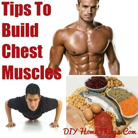 how to build and tone chest muscles diy home things