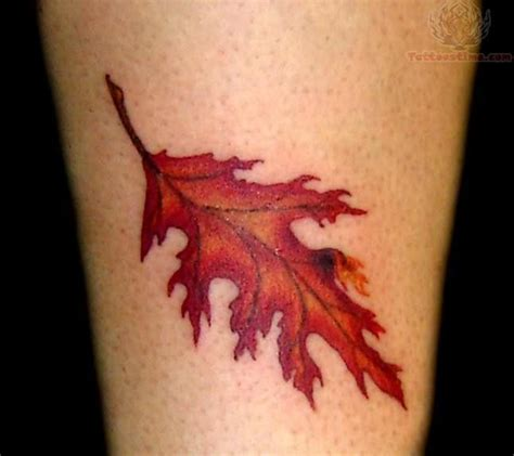 oak leaf tattoo best 25 oak leaf tattoos ideas on white oak