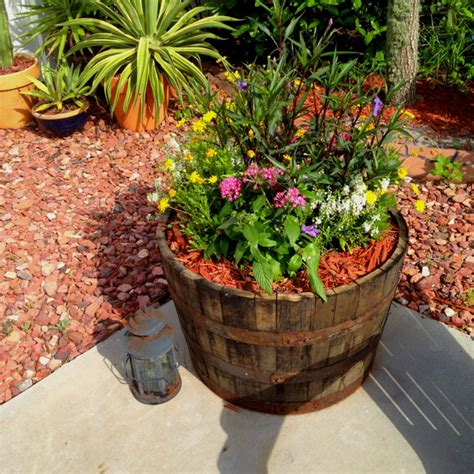 wine barrel planter 1000 ideas about wine barrel planter on