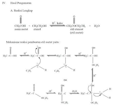asam format adalah asam kuat hidupku pembuatan etil asetat