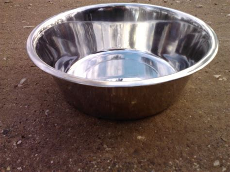 large water bowl how much water is much water german shepherd forums