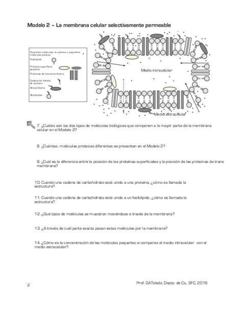guia python funciones estructuras y membrana estructura y funci 243 n gu 237 a para primero medio