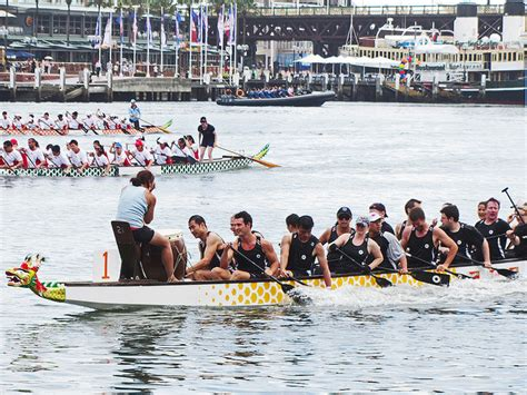 dragon boat racing sydney 2019 chinese new year festival sydney explore australia with kids