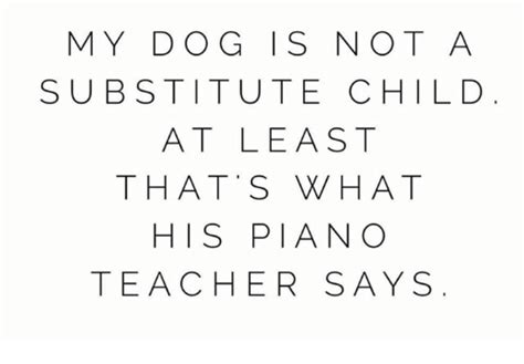my puppy is not piano memes of 2017 on me me 9gag