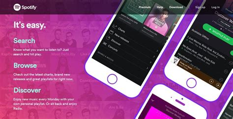 web colors 2017 17 wordpress web design trends we can expect in 2017