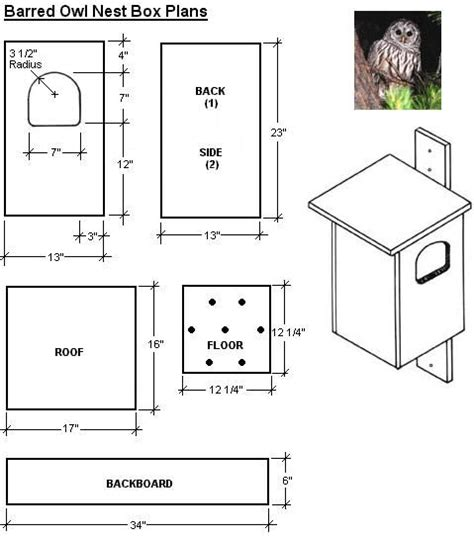 plans on how to build an owl nesting box the hungry owl project free easy bird house plan screech owl bird house
