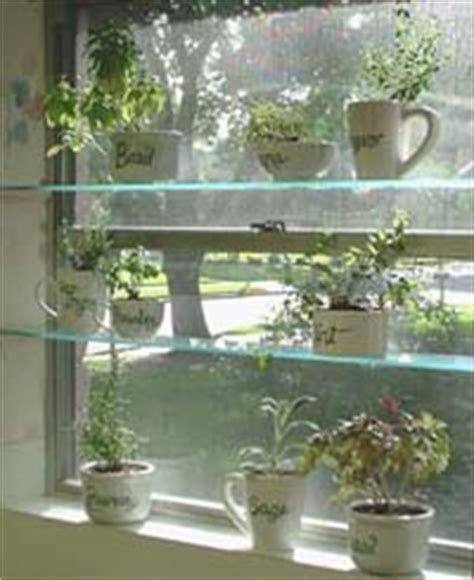 diy spice up your kitchen with a window herb garden