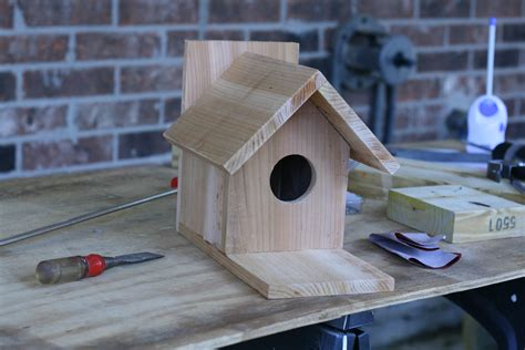 Easy Bird House by White Traditional Bird House Brag Post Diy Projects