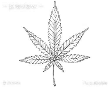 weed leaf coloring pages printable adult color page marijuana mary jane cannabis