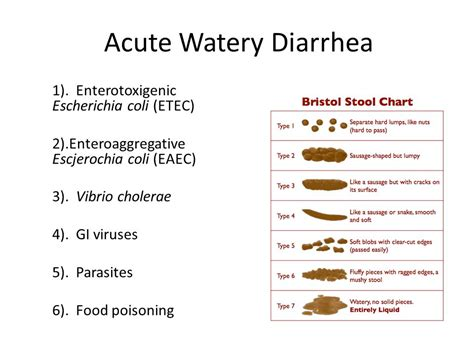 infectious diarrhea in travel and ppt