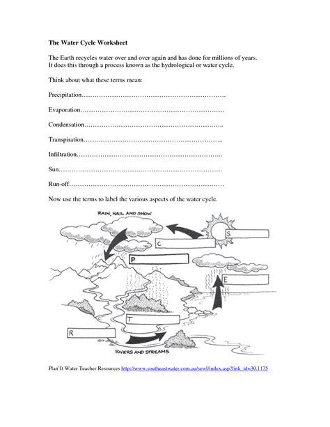 Water Worksheets by Search Results For Water Cycle Diagram Worksheet Blank