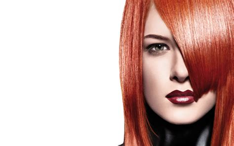 lakme hair styles cost lakme hair color in 2016 amazing photo haircolorideas of