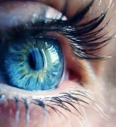 blue eye color eye color blue amazing color 180 s