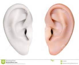human ear stock images image 37679324