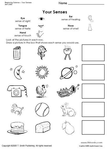 new year activities for fives five sense worksheet new 656 five senses worksheets third