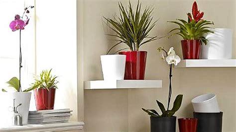 pavimenti per soggiorno pavimenti per soggiorno piante per
