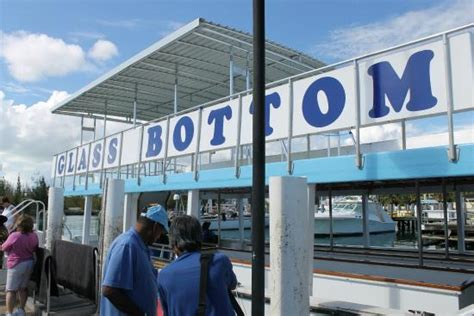 glass bottom boat tour grand bahama island glass bottom boat picture of reef tours freeport