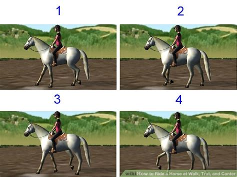 Ride On To Walk how to ride a at walk trot and canter 3 steps