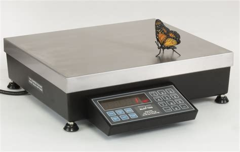 benched series 7600 series bench scale pa scale pennsylvania scale company