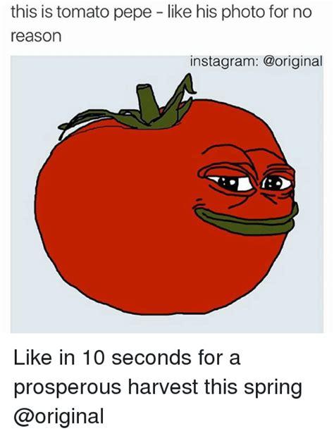Tomato Meme - tomato meme 28 images ordinary tomato meme generator
