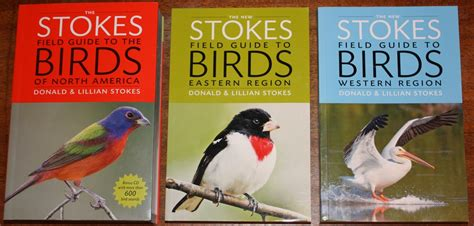 review the new stokes field guide to birds eastern