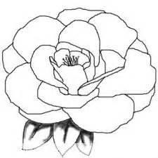 17 beste idee 235 n over roos tekeningen op pinterest