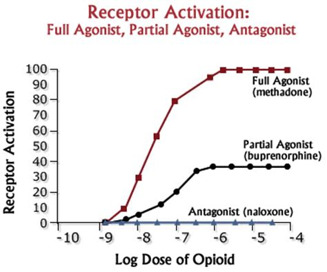 office based buprenorphine treatment of opioid use disorder books opioid classification agonists partial agonists and