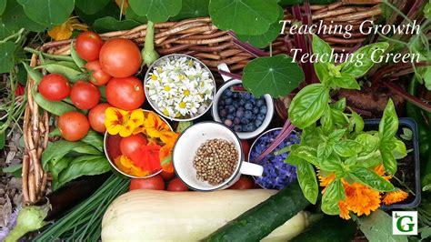 vegetable gardens therapeutic gardens community