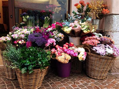 franchising fiori frida s franchising fiori