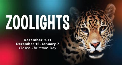 hattiesburg zoo christmas lights 904 happy hour article places to see christmas lights