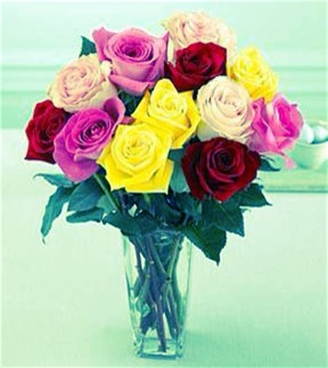 What Makes Roses Last Longer In A Vase by How To Make Flowers Last Longer In A Vase Trusper