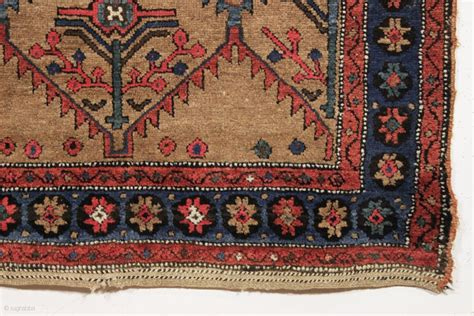 interesting rugs antique nw persian or kurdish camel ground rug