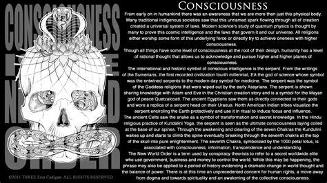 design conscious meaning three erin cadigan