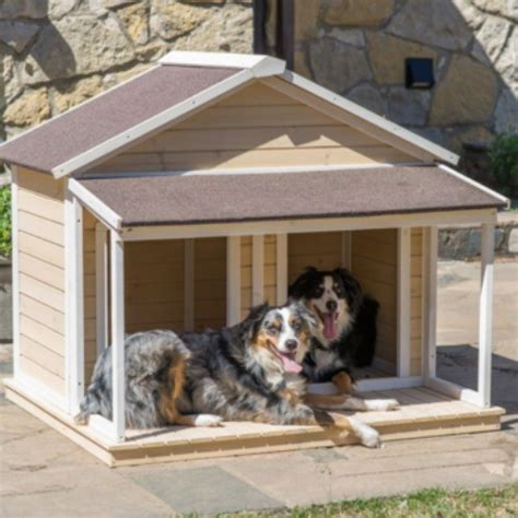buy large dog house trying to find a lost pet dog in the roseville area