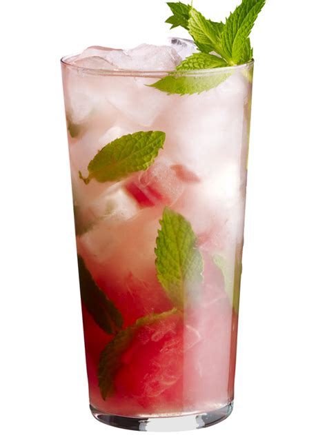 watermelon mojito rosa s catering blog knoxville s caterer since 1971