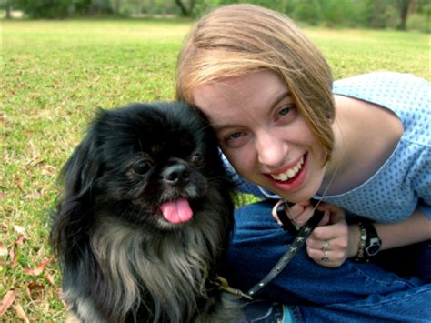 can dogs tell when your can dogs sense your emotions how your pekingese feels